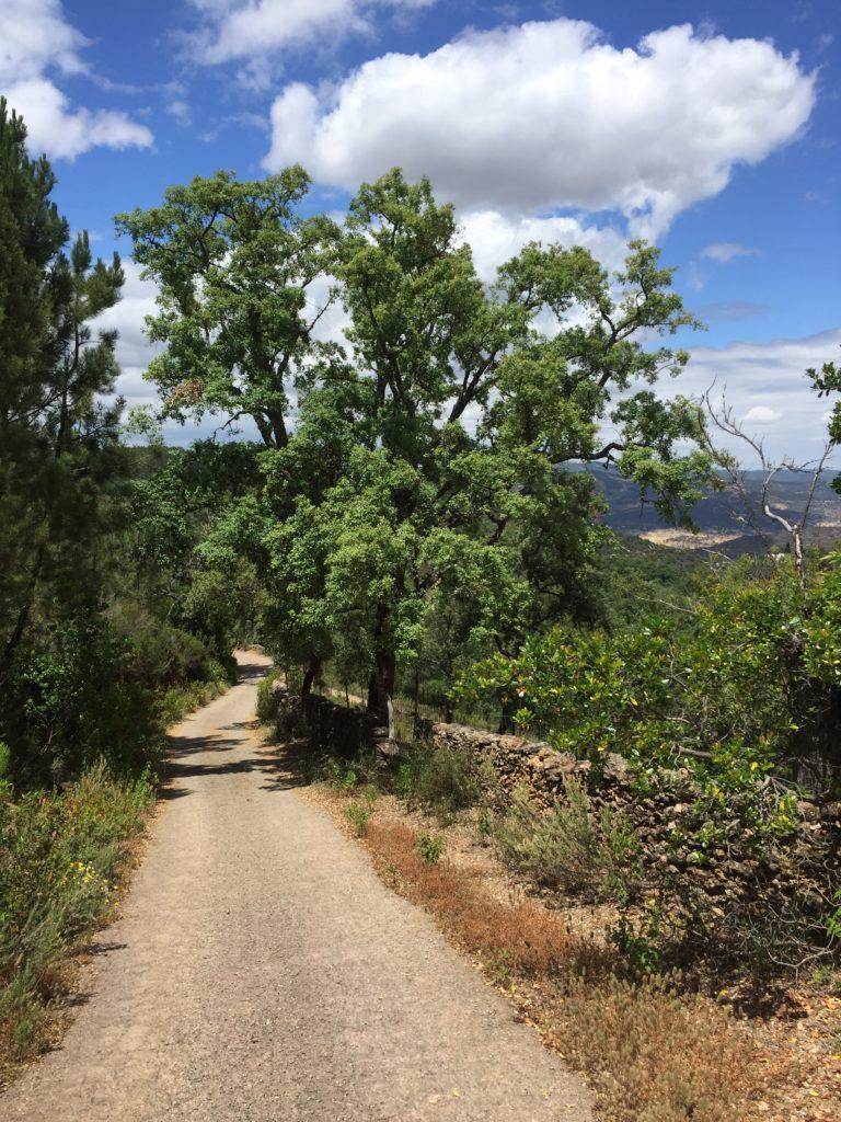 Widok na szlak w Sierra de Aracena