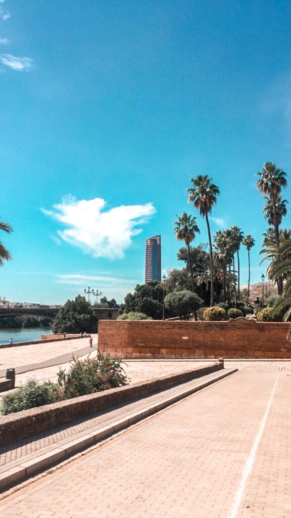 Rzeka Guadalquivir, widok na wieżę sewilla, palmy, niebo, rzeka sewilla