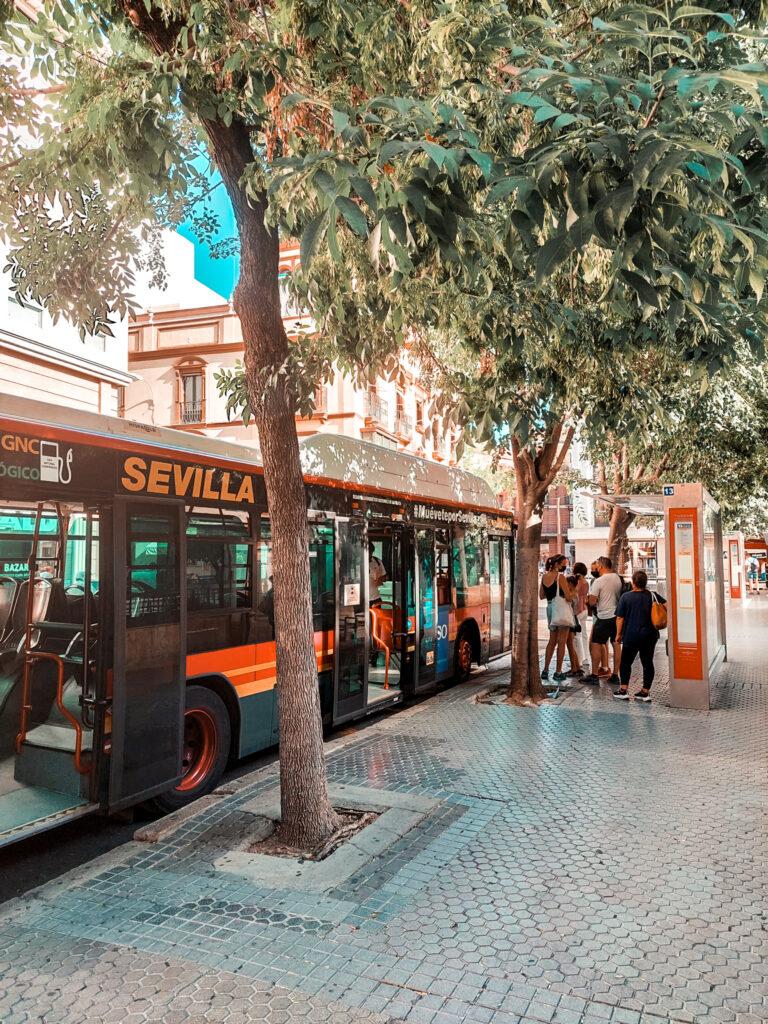 Transport w Sewilli, autobus, przystanek autobusowy, komunikacja publiczna w Hiszpanii