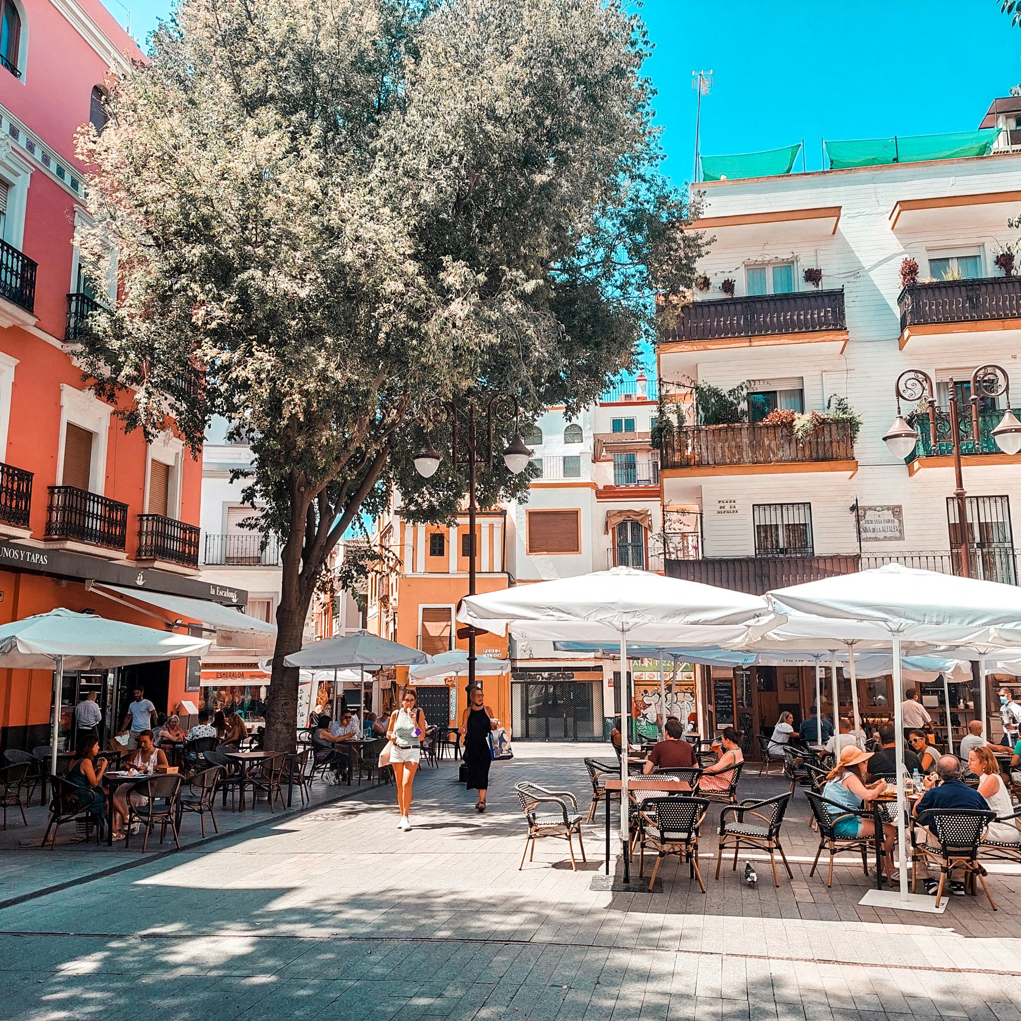 Plac Alfalfa, Sewilla, Hiszpania, Andaluzja, Place, restauracje, tapas bary